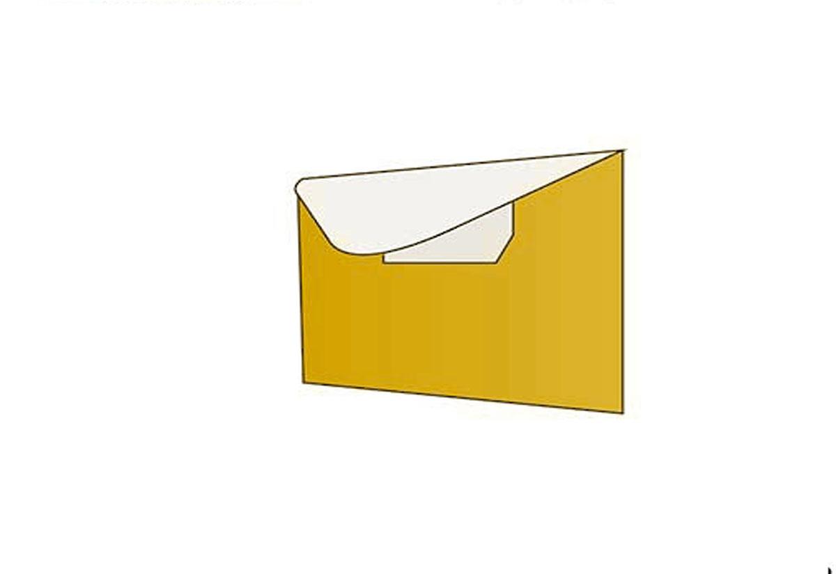 Economy Disc Folder